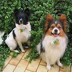 Frodo and Sam by doltoybreeds