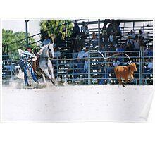 STEER ROPING Poster