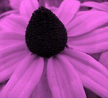 Lavender luscious by goddessteri211