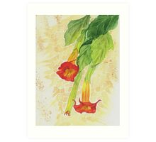 red flowers, Art Print