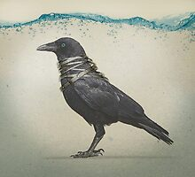 Raven Band by Vin  Zzep