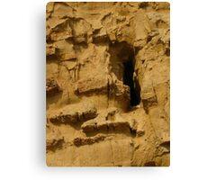 Honeycomb Cliffs, Broadchurch Canvas Print