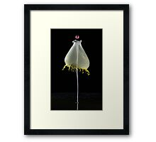 While baloon Framed Print