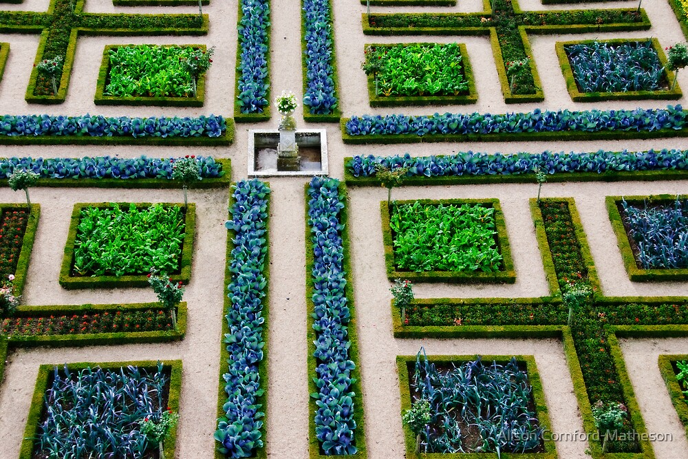 Formal Garden - Chateau Villandry, Loire Valley by Alison Cornford-Matheson