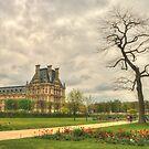 Lone Tree Louvre by Michael Matthews