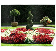 Gardens - Mount Edgcumbe Country Park Poster