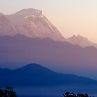 Annapurna Misty Sunrise 3 by Suze Chalmers
