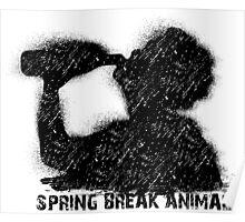 Spring break party animal Poster