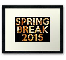 spring break 2015 Framed Print