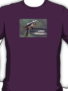 Great Spotted Woodpecker Eating Peanut Cake T-Shirt