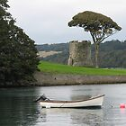 Tower and tree at Portaferry by rustumlongpig