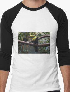 National Aviary Pittsburgh Series - 16 Men's Baseball ¾ T-Shirt