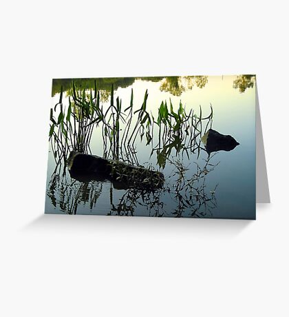 Reflective Waters Greeting Card