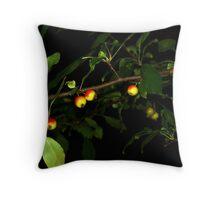 Crabapples at Night Throw Pillow
