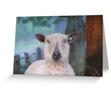 Like the fringe Lamby  (as is) Greeting Card
