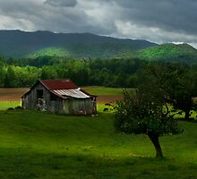 Tennessee Barn by Gary Pope