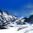 Aletsch Glacier  by Laurie Puglia