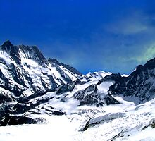 Aletsch Glacier  by Laurie Puglia