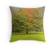 TREE IN THE GROUNDS OF CASTLE ACRE PRIORY RUINS Throw Pillow