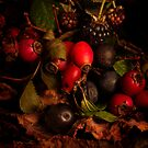 Hedgerow Fruits by Gazart