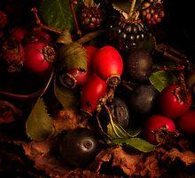 Hedgerow Fruits by Gazart