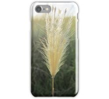 Small grass stem with seeds iPhone Case/Skin