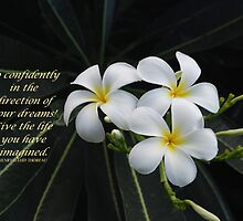 """Go confidently..."" by Marjorie Wallace"