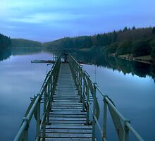 Dartmoor reservoir  by David Clewer