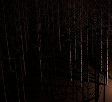 Desolate Forest by Mattj120