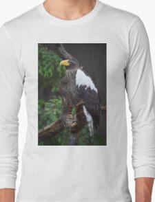 National Aviary Pittsburgh Series - 23 Long Sleeve T-Shirt