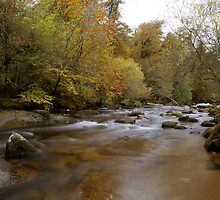 River Dart, on Dartmoor by David Clewer
