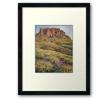 Outside Tucson Framed Print