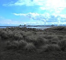 North Gare by dougie1