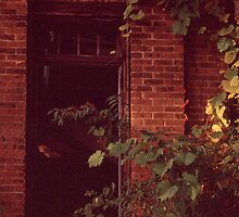One Room Schoolhouse - Doorway by Steven Godfrey