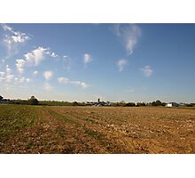 farmland Photographic Print