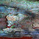 Rock Pools by Marguerite Foxon