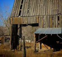 Old Barn House by Jessica  Alvey