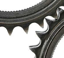 gears 11 by luisfico