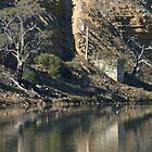 Murray River Reflections 4 by LynneHerry