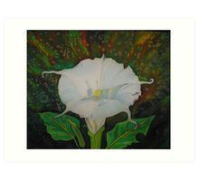 Jimson Weed Art Print