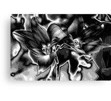 Rain Lilies - BW Canvas Print