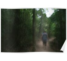 Lost in Mossman Gorge - Part 1 Poster