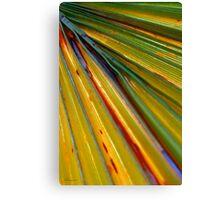 Over the Rainbow Canvas Print