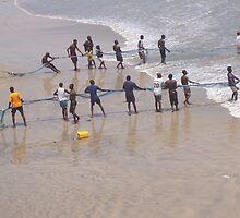 Net fishing, Atlantic Ocean, Accra, Ghana, 2005 by Donald Williams