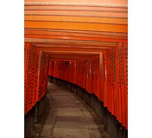 Inari tunnel, Fushimi near Kyoto, Japan, 2006 Photographic Print