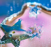 Star Fish. by Sherstin Schwartz