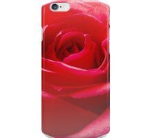 Red rose Close up iPhone Case/Skin