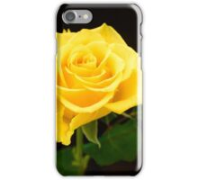 Yellow Rose iPhone Case/Skin