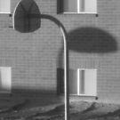 shadow goal by David owens