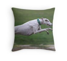 Fabulous Flynn! Throw Pillow